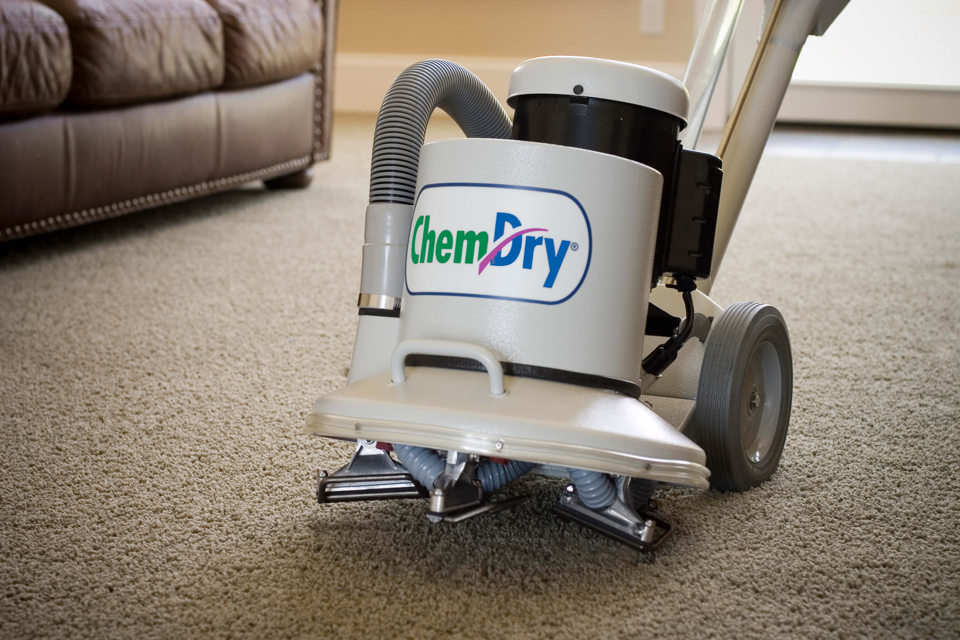chem-dry windy city carpet cleaning